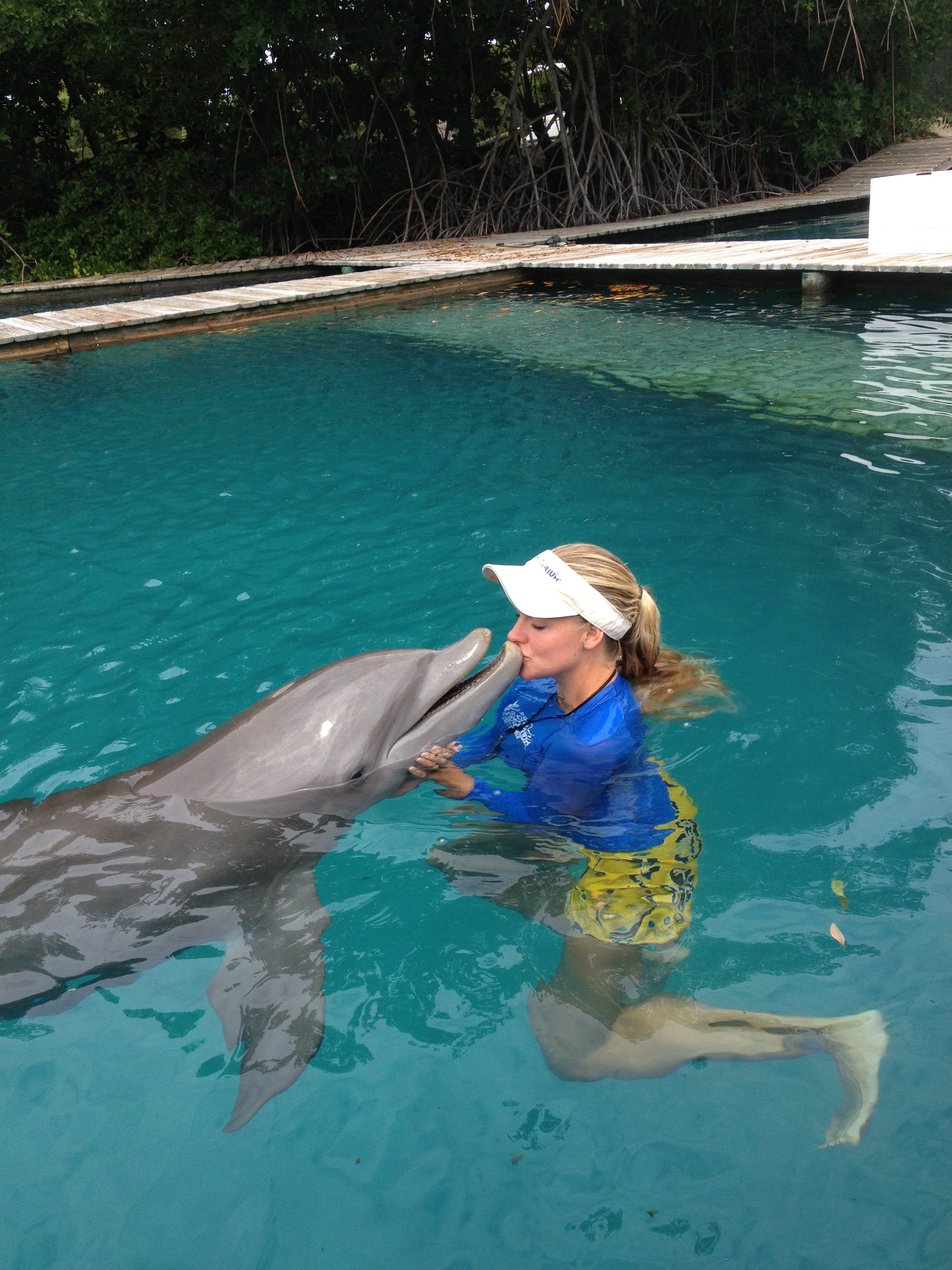 Where are there good collages for Marine Mammal trainers? In Florida Miami?