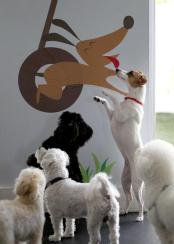 Your Good Dog - Dog Boarding, Dog Daycare