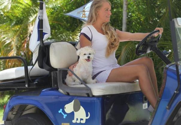 Golf cart pic  dog boarding key biscayne